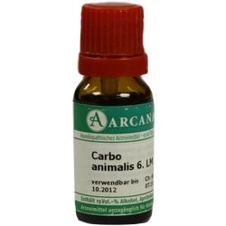 CARBO ANIMALIS LM 6 Dilution